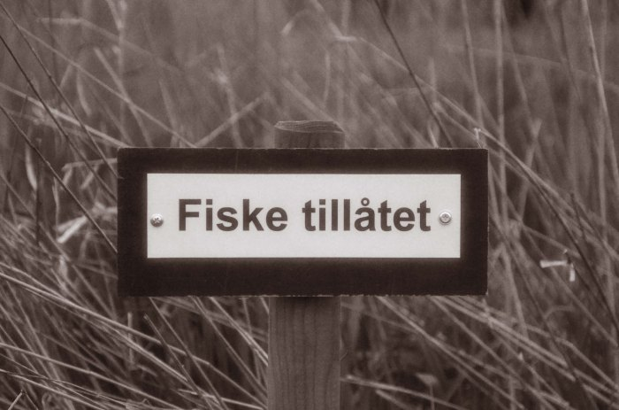 Swedish Anglers-4